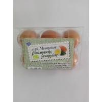 Βιολογικά Αυγά Μεσογείων Εξάδα
